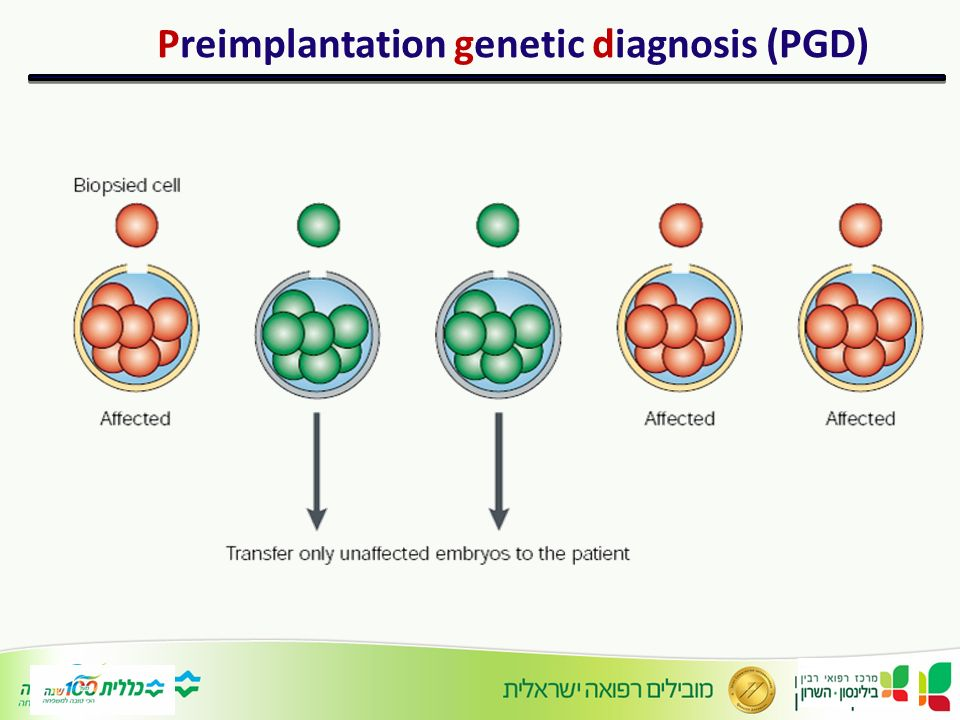 preimplantation report The preimplantation genetic testing market research report provides market size, share, growth, trends, demand, forecast and company profiles the global preimplantation genetic testing (pgt) market is segmented by type, applications & region.