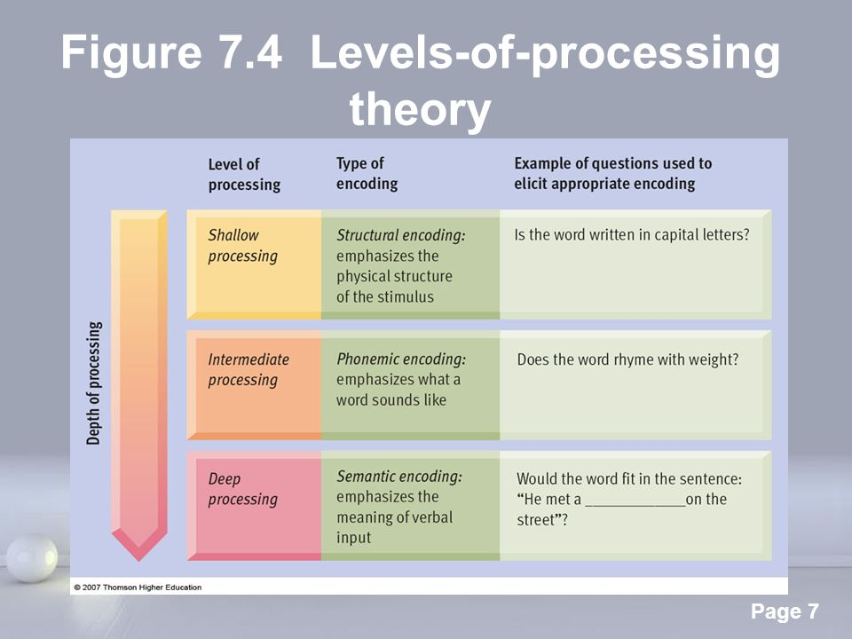 levels of processing essay psychology Free essay: evaluating the levels of processing theory the levels of processing theory was put forward in 1972 by craik and lockhart this theory came about.