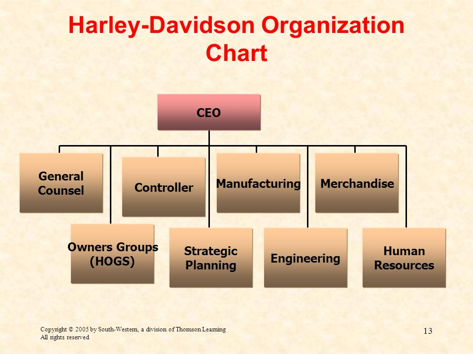 The strategic options available to the harley davidson organization