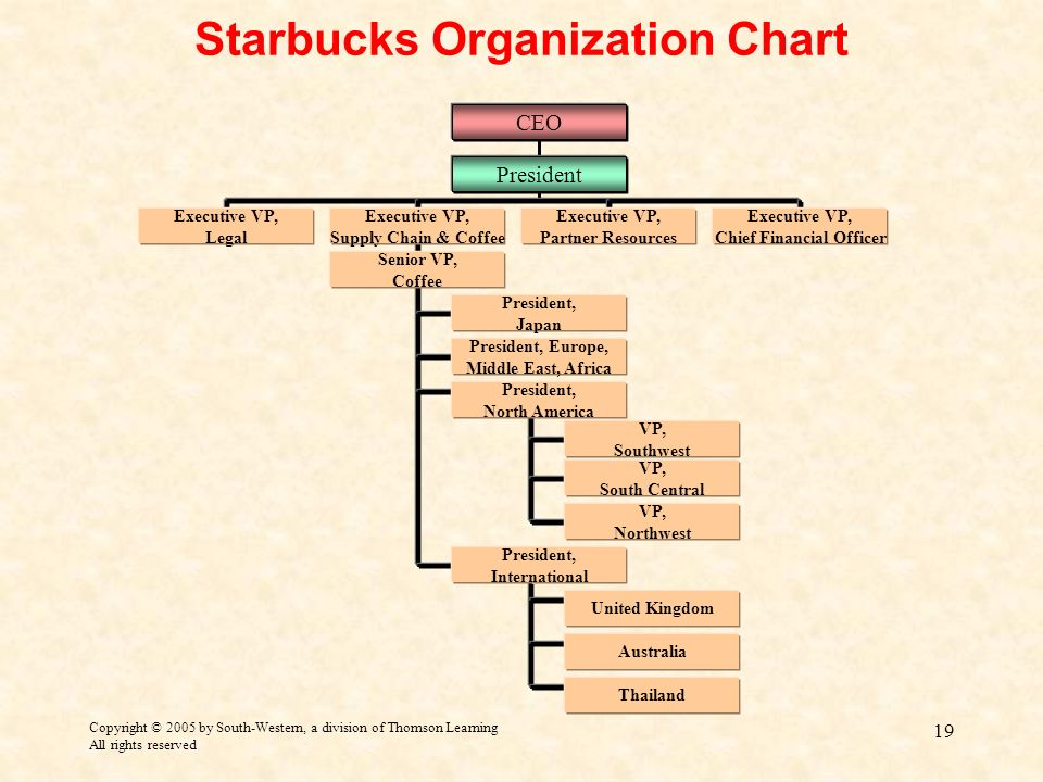 starbucks organizational structure essays Creating a culture of belonging, inclusion and diversity at the heart of our business, we seek to inspire and nurture the human spirit - understanding that each person brings a distinct life experience to the table our partners are diverse not only in gender, race, ethnicity, sexual orientation, disability, religion and age, but.