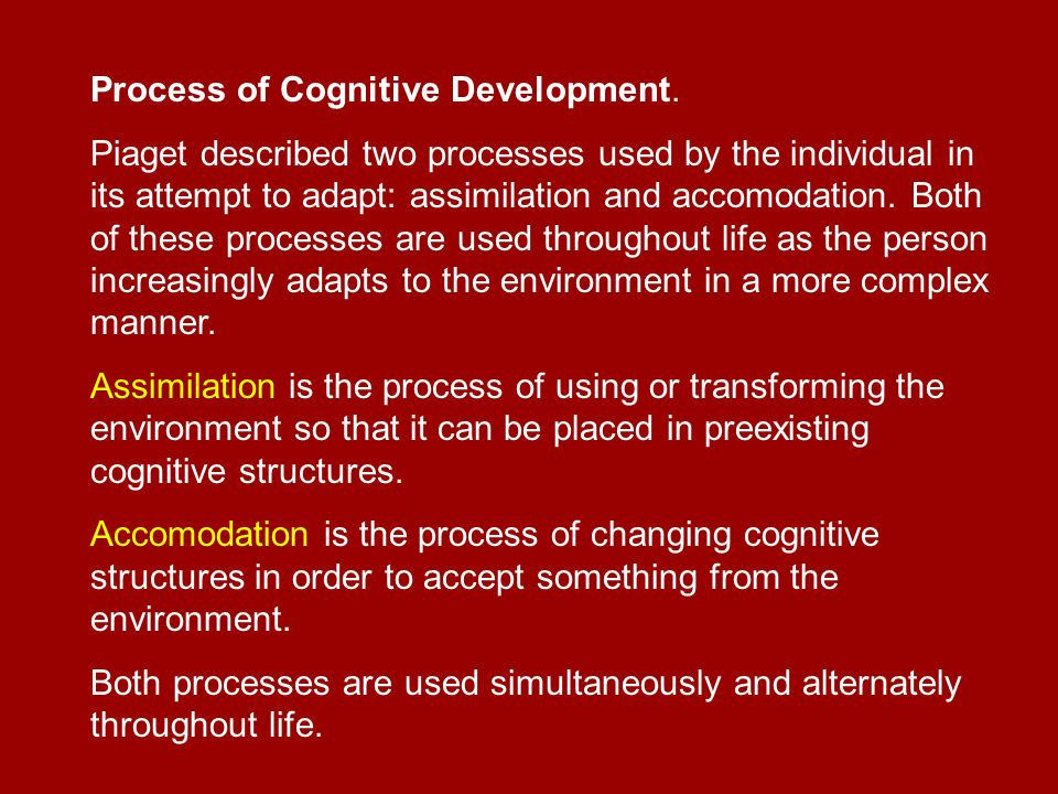 the process of the cognitive development of children Spending time in nature is essential for cognitive development  parts and child- led investigation set the ground work for cognitive processes.