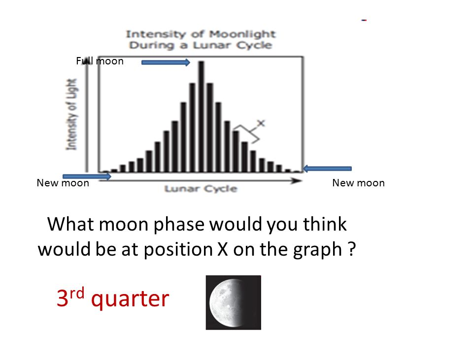 Amazing What Moon Phase Would You Think Would Be At Position X On The Graph Wiring Digital Resources Instshebarightsorg