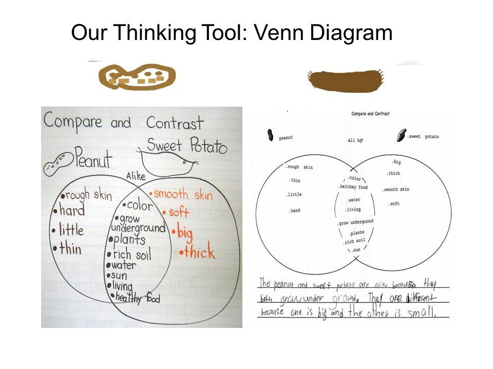Free Online Venn Diagram Tool Nemetasfgegabeltfo