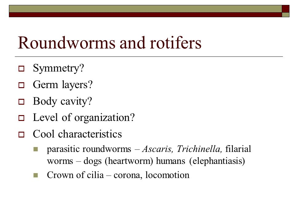 Flatworms roundworms and rotifers