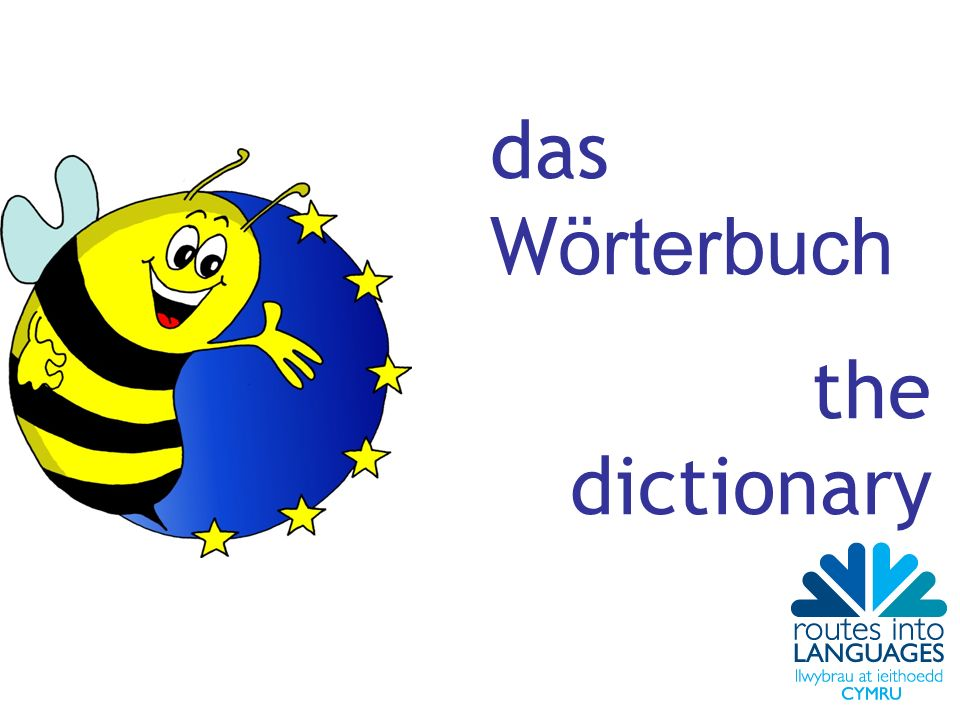 das Wörterbuch the dictionary