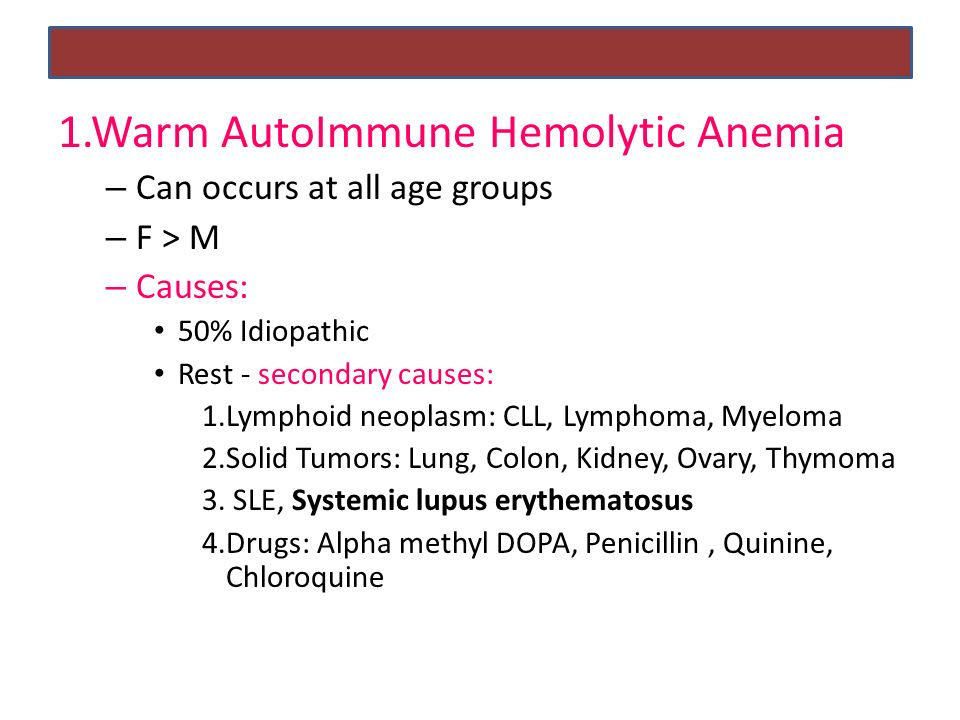 auto immune hemolytic anemia - ppt download, Skeleton
