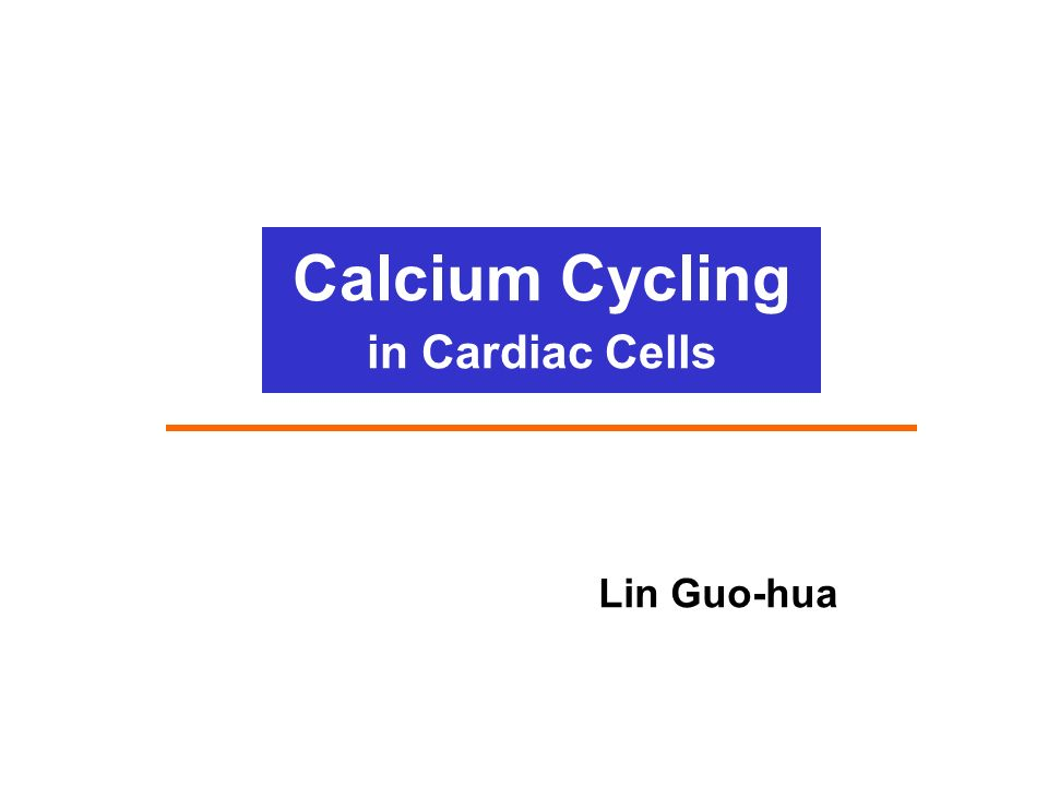 Calcium Cycling In Cardiac Cells Ppt Video Online Download
