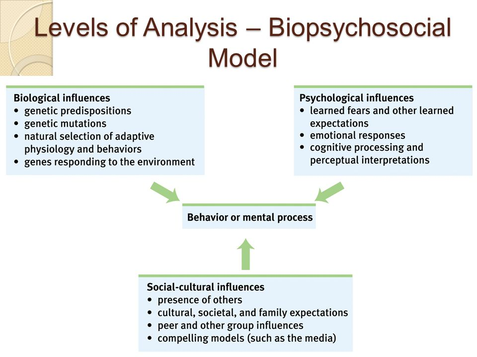 Biopsychosocial perspectives of learning