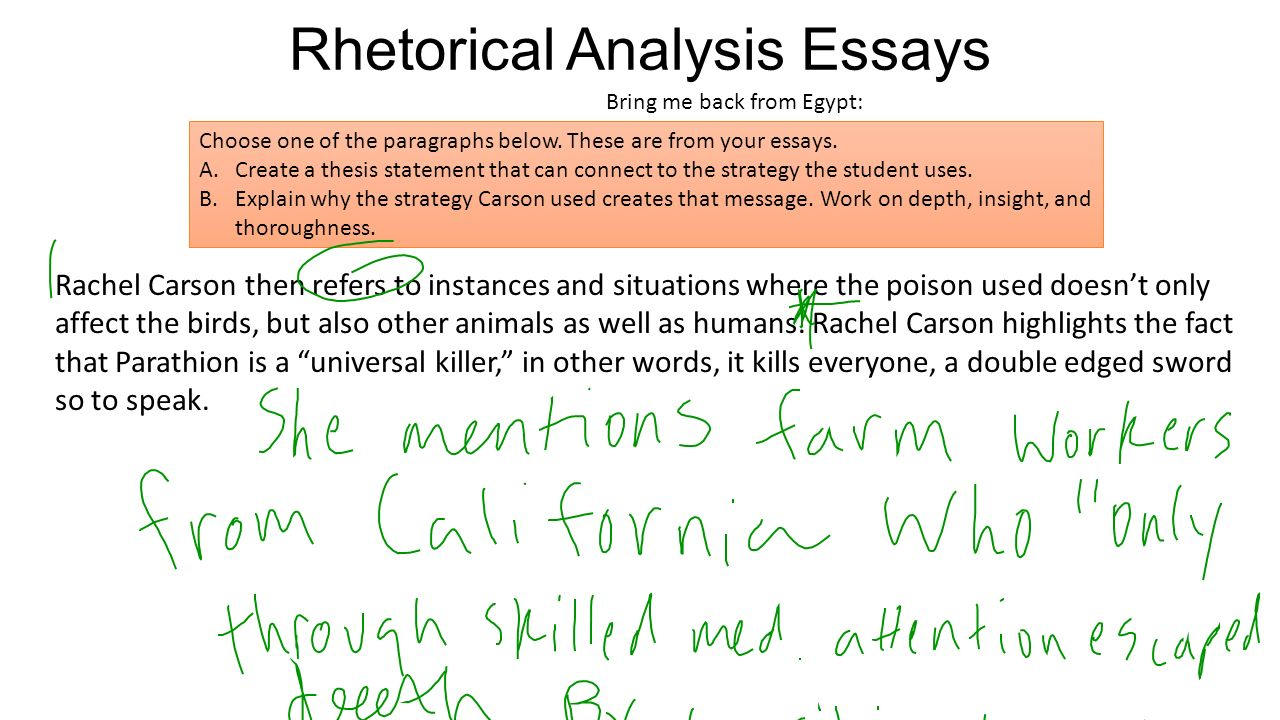 Poverty causes crime essay