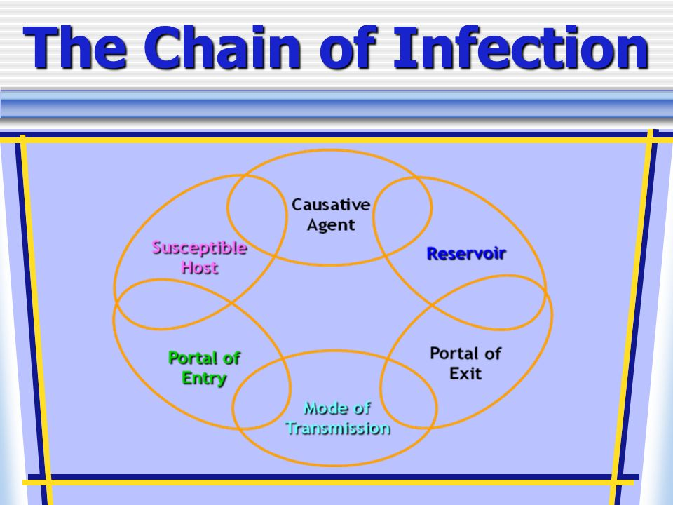 what is a communicable disease chain This model explains the spread of a communicable disease from one host (or person) to another the basic idea represented in the chain of infection is that.