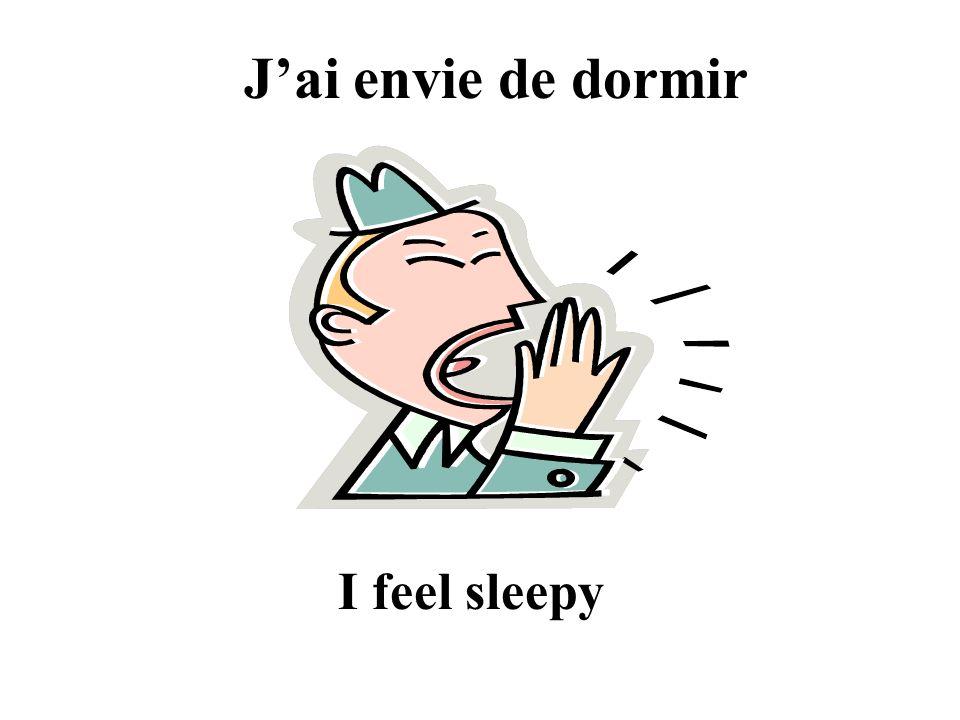J'ai envie de dormir I feel sleepy