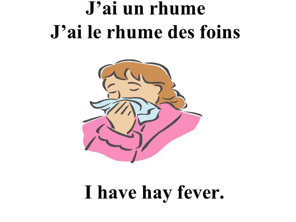 J'ai un rhume J'ai le rhume des foins