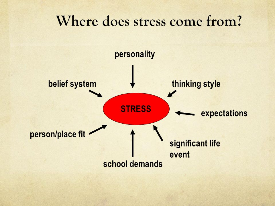 Year 12 And Exam Stress What It Is What Is Does How To