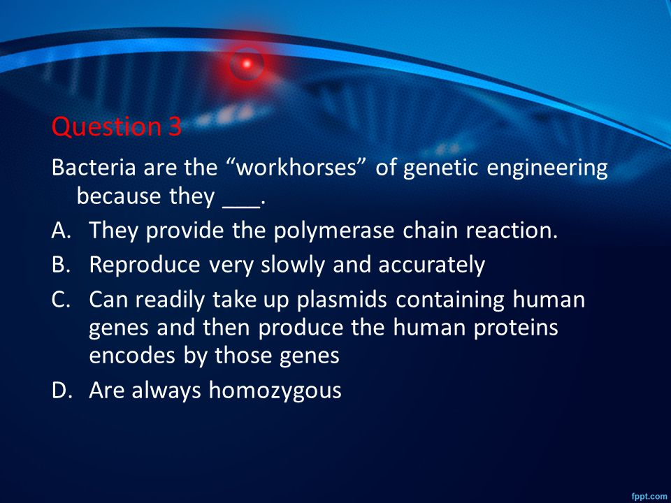 genetic engineering 2 essay