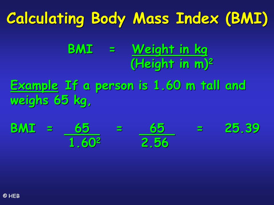 Does size matter gcse biology by dr h e bloomfield heb ppt 21 calculating ccuart Images