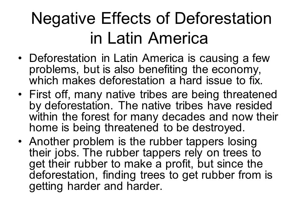 Ways to stop deforestation essay