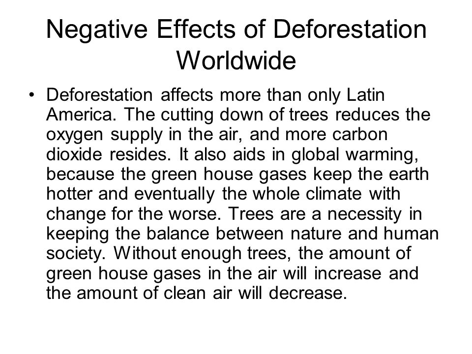 describe the causes and effects of deforestation essay