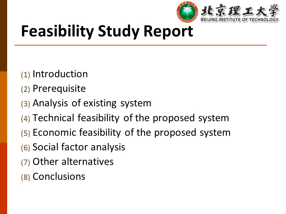 introduction to feasibility study pdf