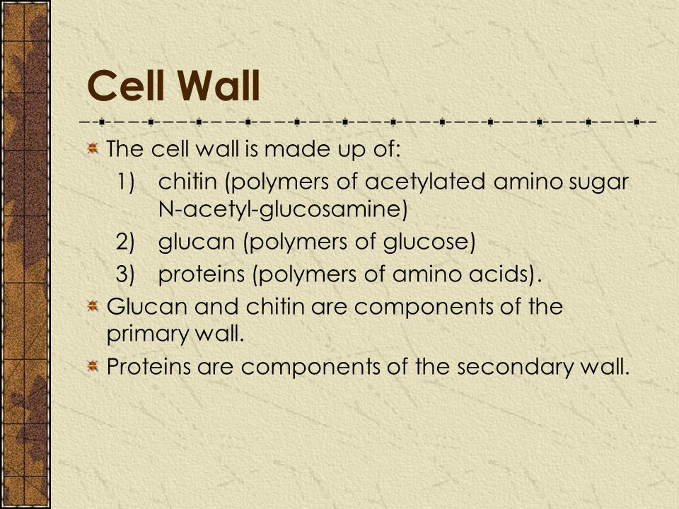 cellulose as the basic structural component of plant cell wall Cellulose is a polysaccharide (a form of carbohydrate) that has a structural role in animals and plants in plants, cellulose is the compound that gives.