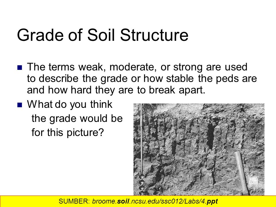 Soil structure density and porosity ppt video online for Soil structure