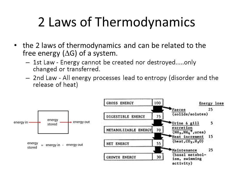 laws of motion and thermodynamics Study law of thermodynamics that explain second law of thermodynamics,   investigate how internal energy helps in understanding first law of  thermodynamics.