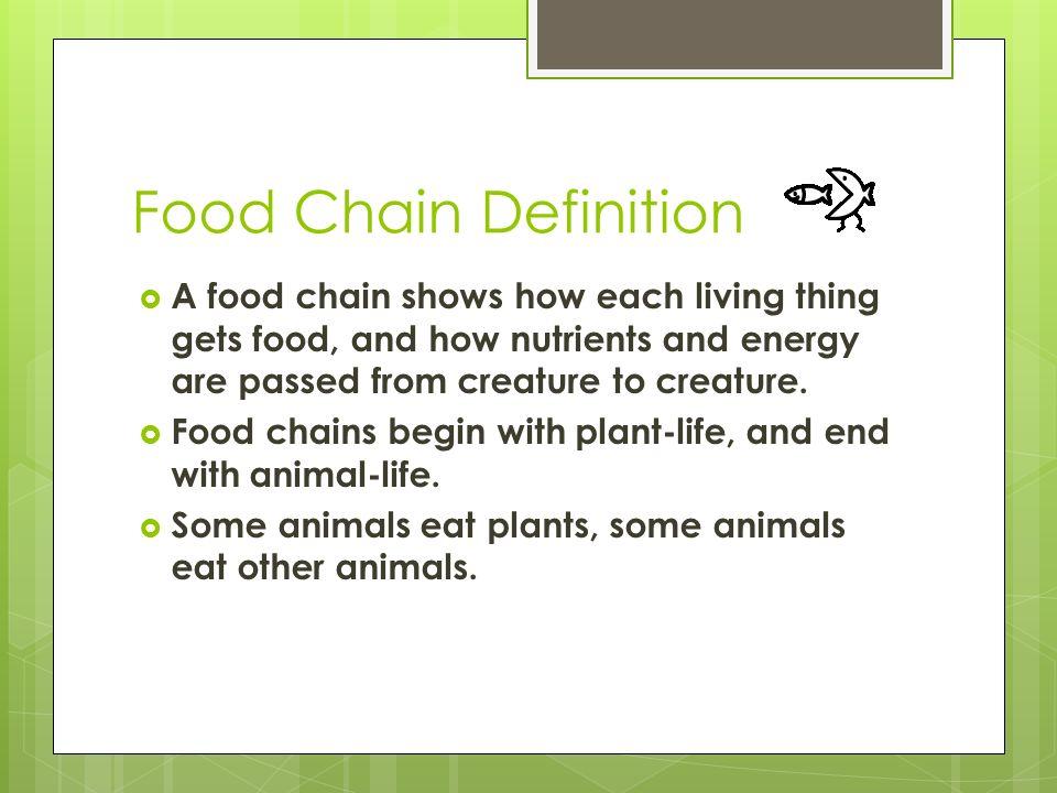 Resultado de imagen de DEFINITION OF FOOD CHAIN