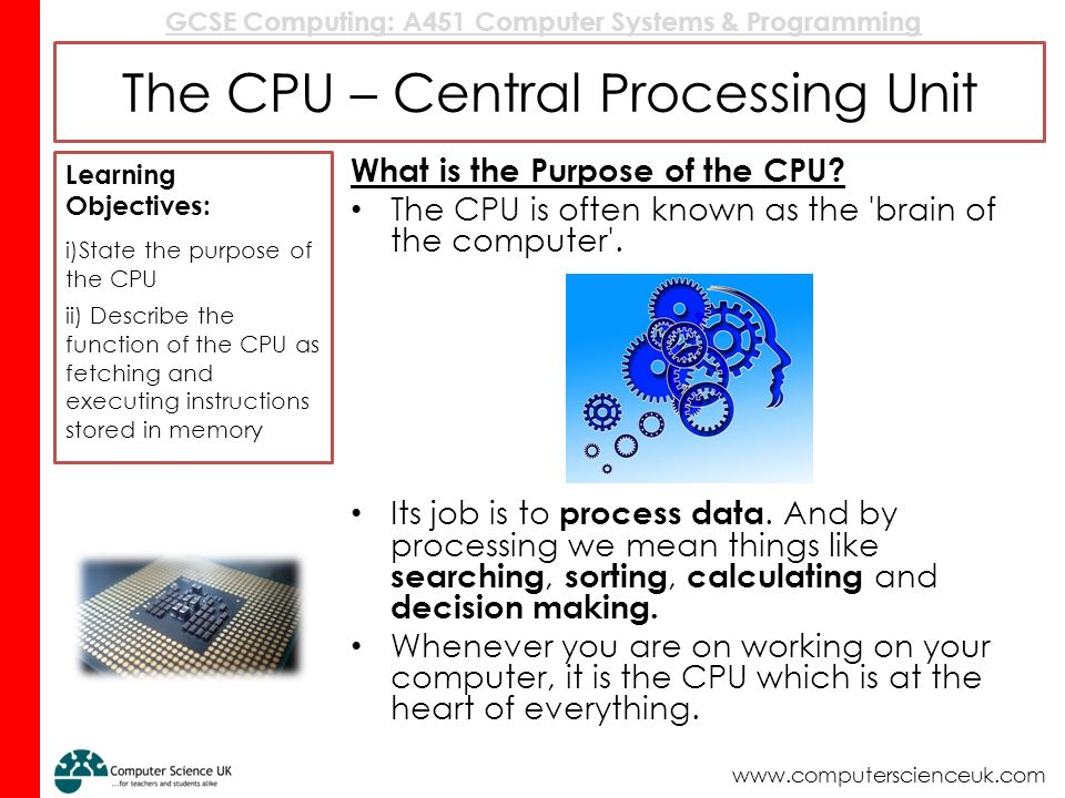 Processor is the heart of the computer