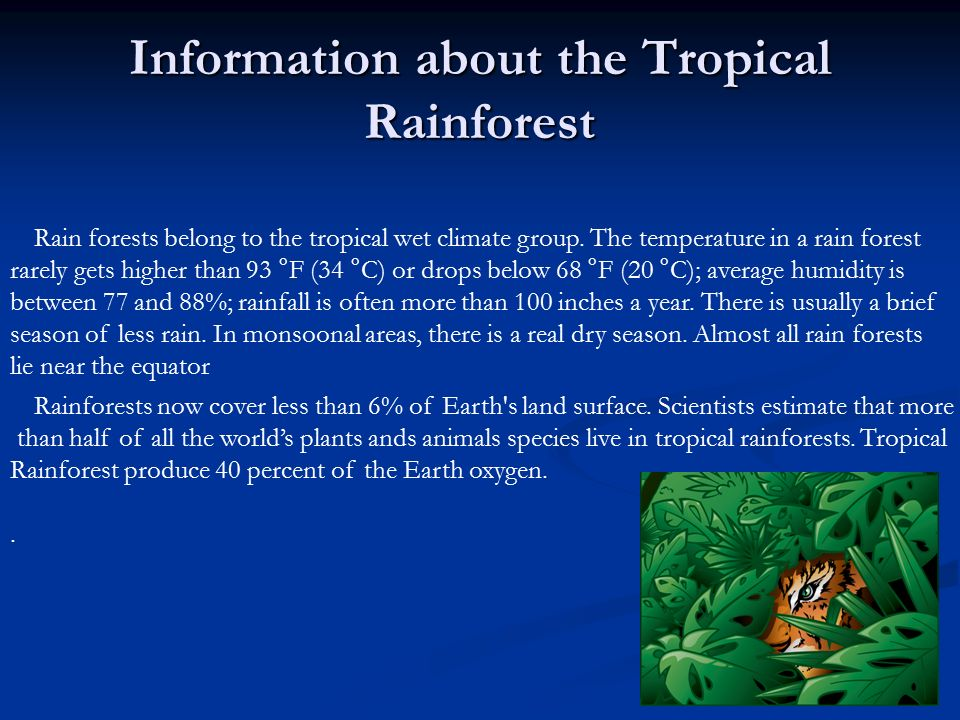 Tropical Rainforest BY Jamilia Flowers 02/13/ ppt download