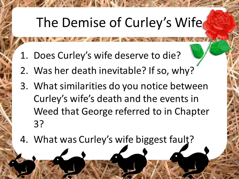 curleys wife in chapter 4 of At the end of chapter 4 what has candy done to make how does curleys wife figure out that it was lennie who injured of mice and men questions.