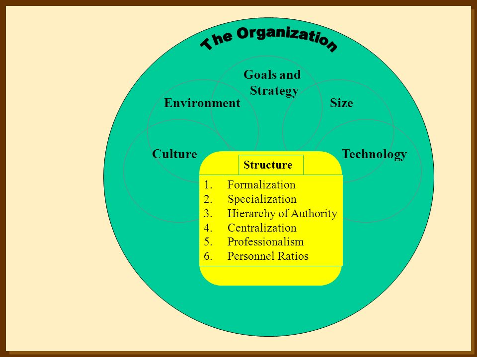 The Organization Goals and Strategy Environment Size Culture
