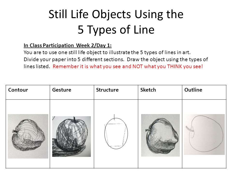 Drawing Lines In Objective C : Lines in art week drawing ppt video online download