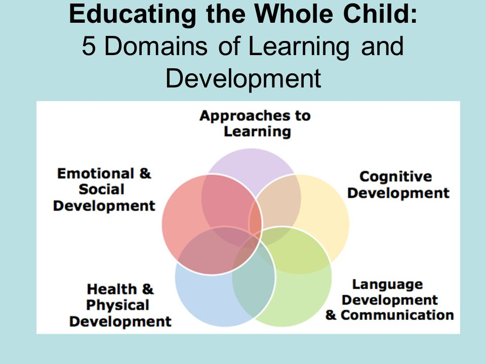 children social and emotional development essay Emotional-social development is one aspect of development that is greatly influenced by factors in the environment and the experiences a child has early childhood reveals a distinctive opportunity for the foundation of a healthy development and a time of immense growth and of helplessness.