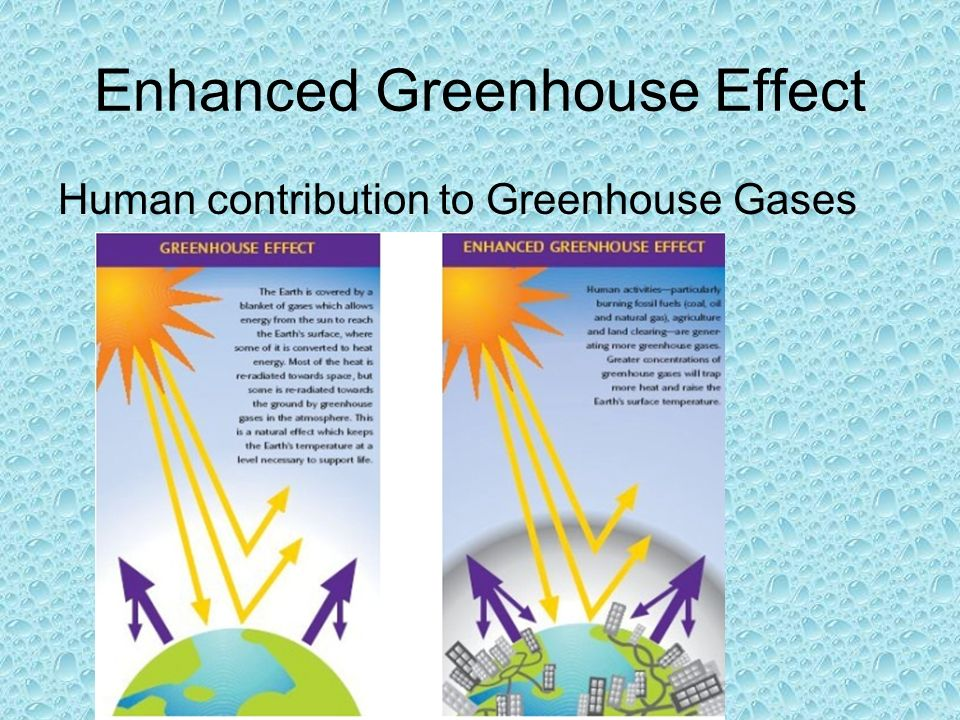 the greenhouse gas effect The greenhouse effect occurs when gases such as methane, carbon dioxide, nitrogen oxide and cfcs trap heat in the atmosphere by acting as a pane of glass in a.