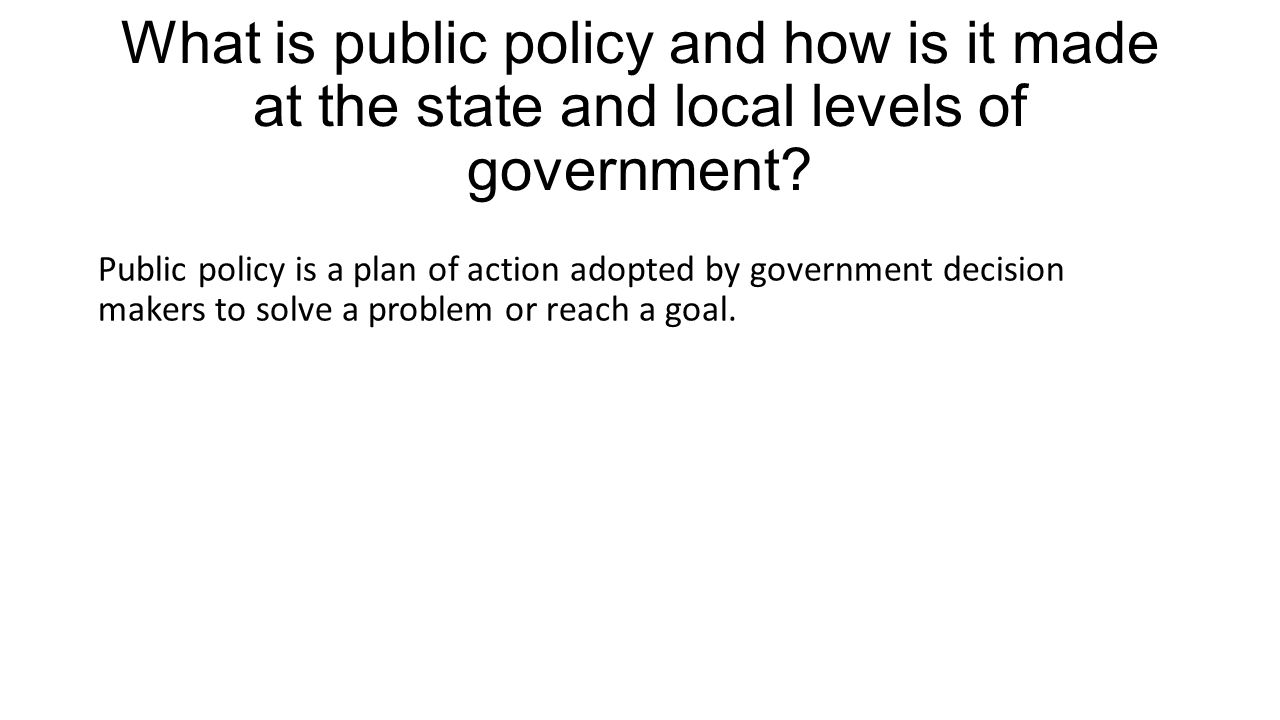 What is public policy and how is it made at the state and local levels of government
