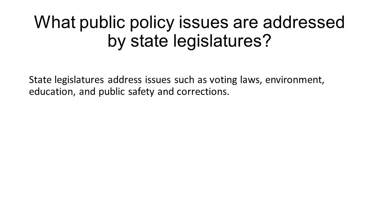 What public policy issues are addressed by state legislatures