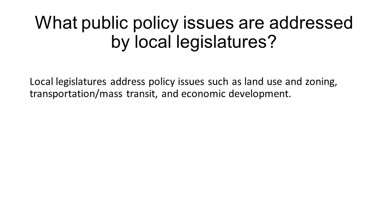 What public policy issues are addressed by local legislatures