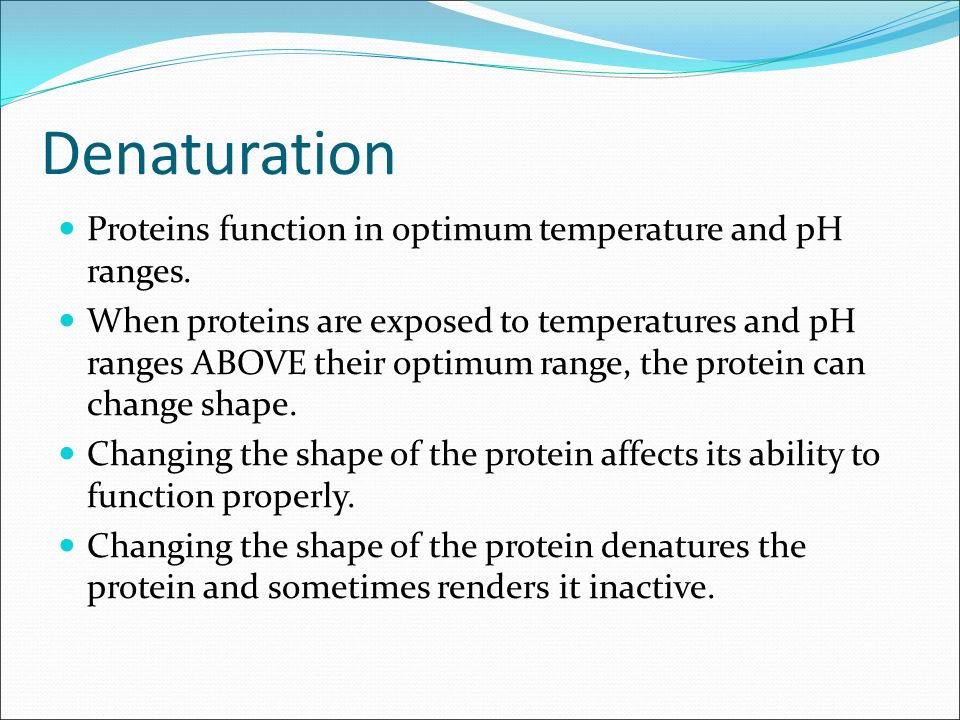 discovering factors affecting protein denaturation essay Essay topics area & country studies essays (1, 896) art essays (8, 424) discovering factors affecting protein denaturation.