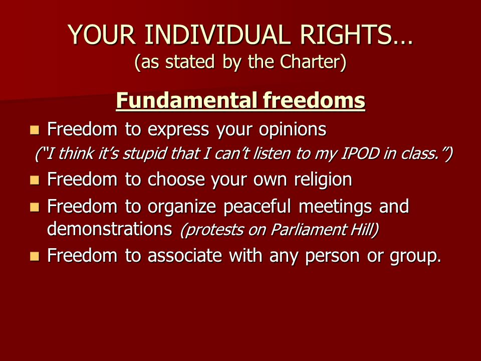 YOUR INDIVIDUAL RIGHTS… (as stated by the Charter)