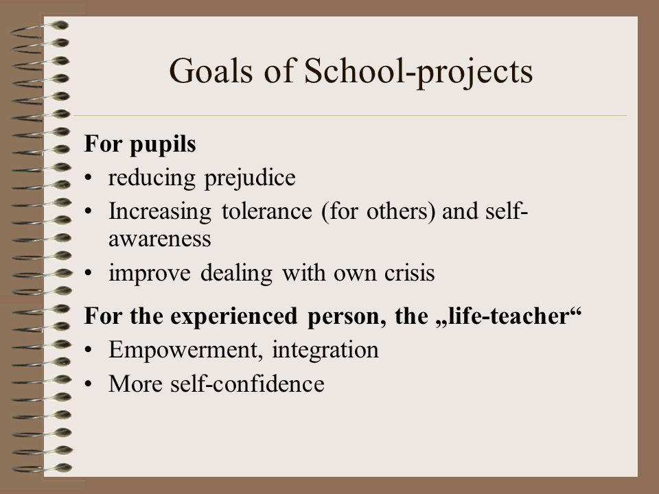 Goals of School-projects