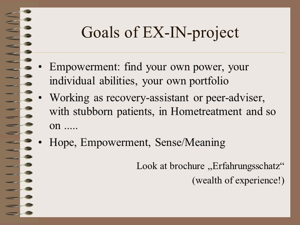 Goals of EX-IN-project