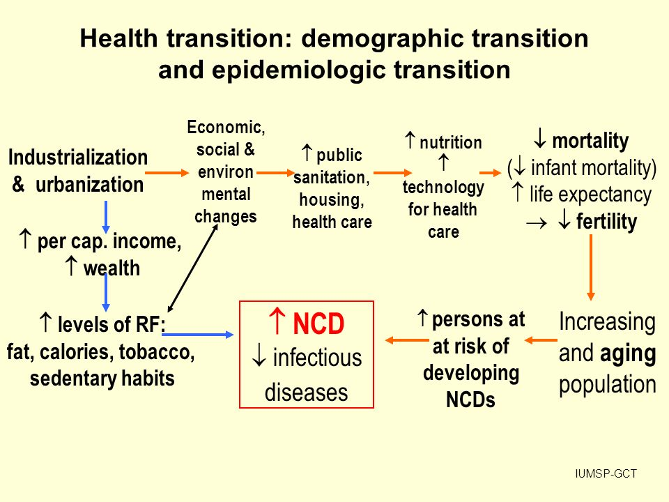 definition of the  u2018health transition u2019