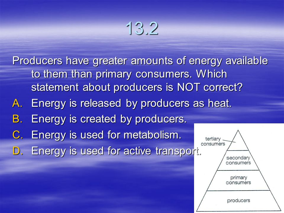 13.2 Producers have greater amounts of energy available to them than primary consumers. Which statement about producers is NOT correct
