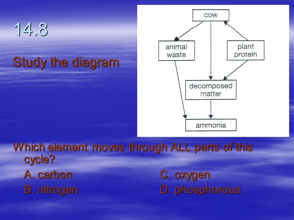 14.8 Study the diagram. Which element moves through ALL parts of this cycle A. carbon C. oxygen.