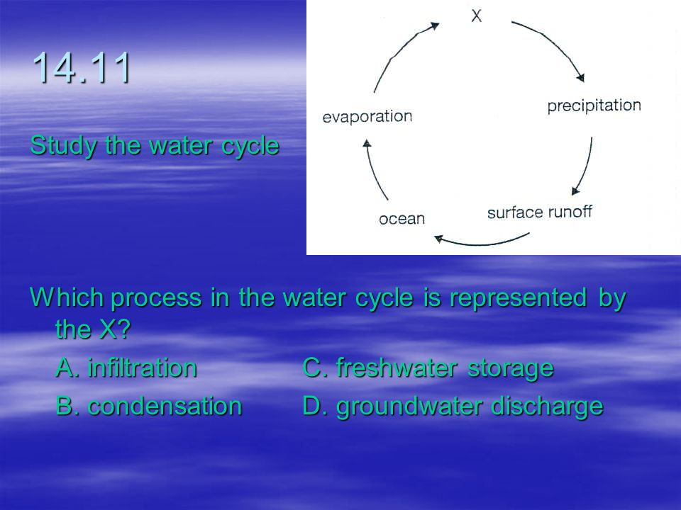 14.11 Study the water cycle. Which process in the water cycle is represented by the X A. infiltration C. freshwater storage.