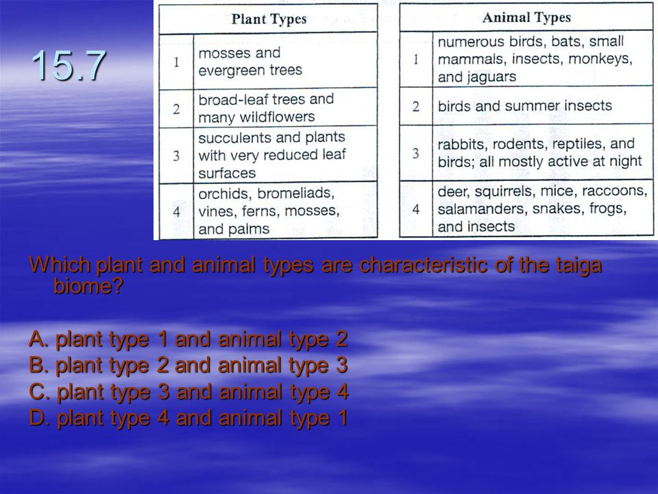 15.7 Which plant and animal types are characteristic of the taiga biome A. plant type 1 and animal type 2.