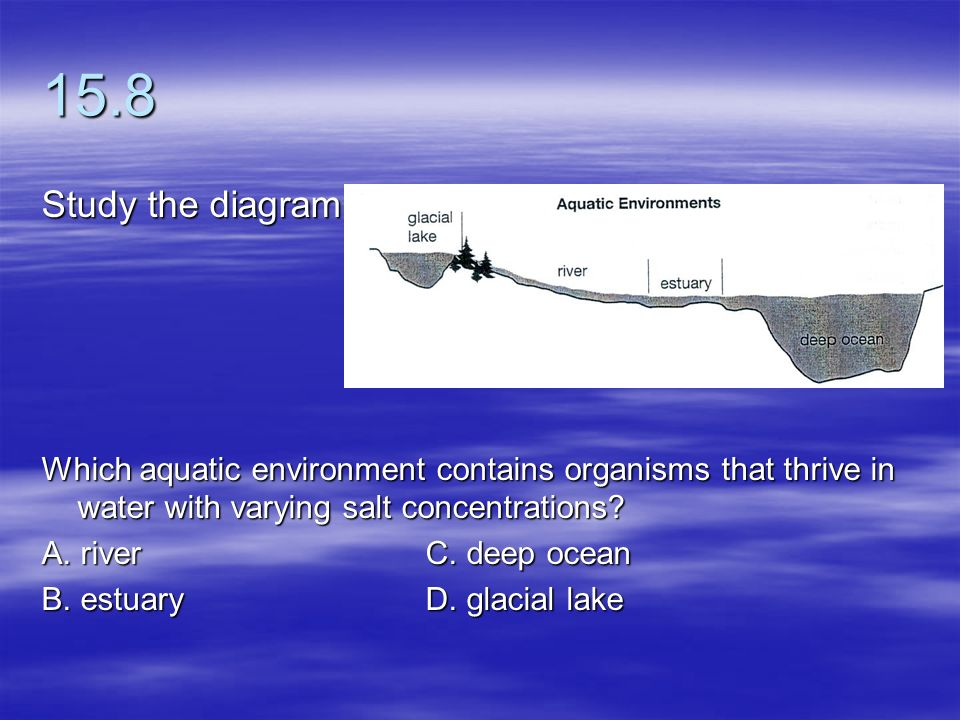 15.8 Study the diagram. Which aquatic environment contains organisms that thrive in water with varying salt concentrations