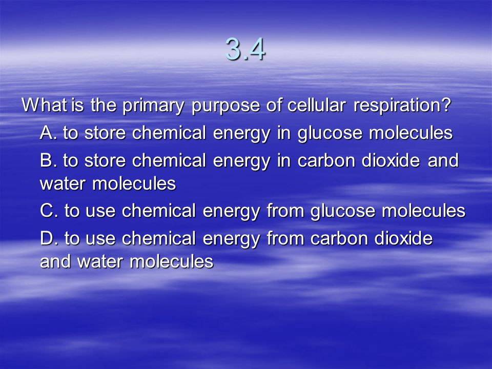 3.4 What is the primary purpose of cellular respiration
