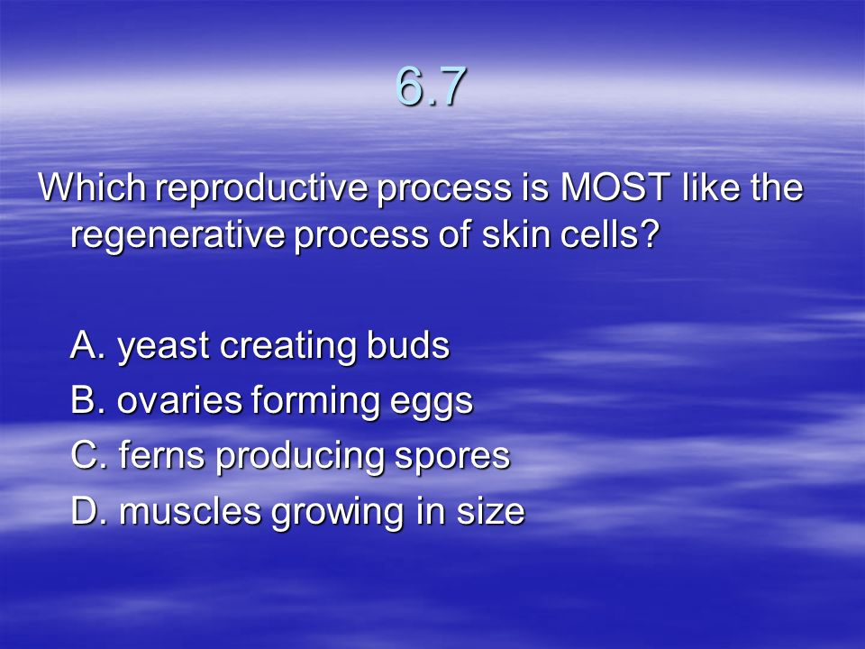 6.7 Which reproductive process is MOST like the regenerative process of skin cells A. yeast creating buds.