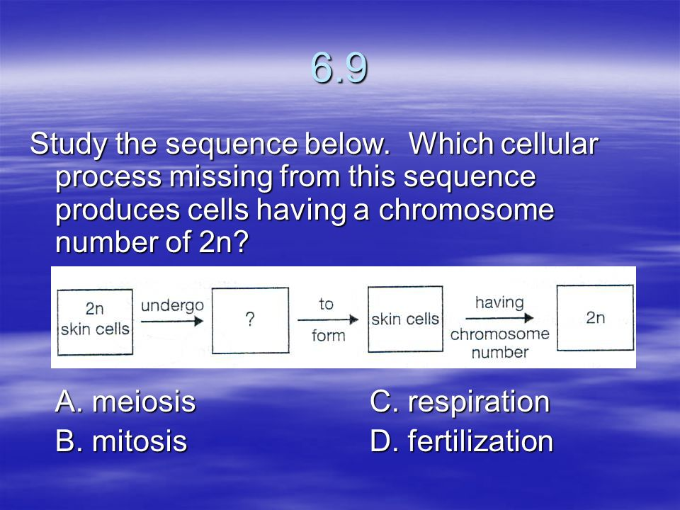 6.9 Study the sequence below. Which cellular process missing from this sequence produces cells having a chromosome number of 2n