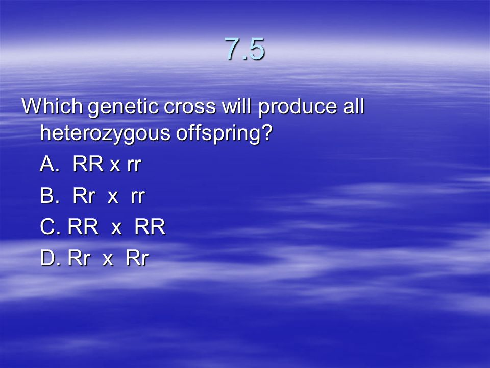 7.5 Which genetic cross will produce all heterozygous offspring